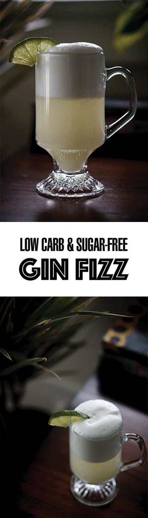 Low Carb Gin Fizz Cocktail Recipe - Sugar-Free!